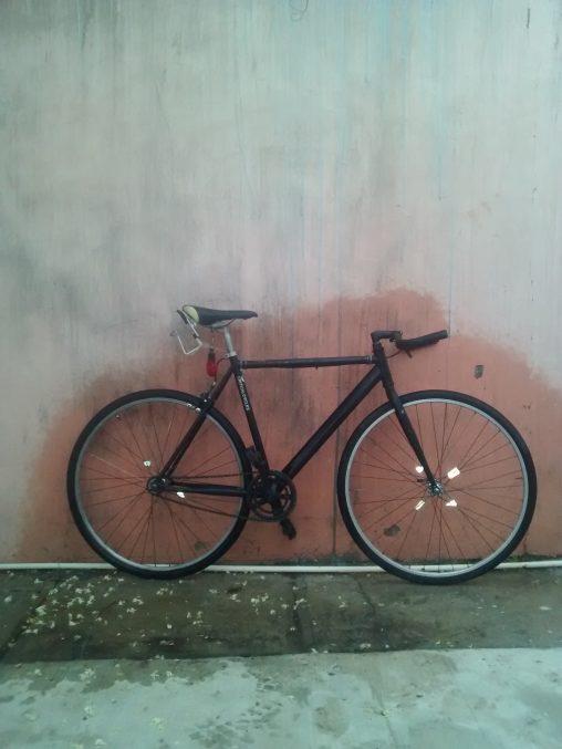 Felipe Treviño's Critycal Cycles