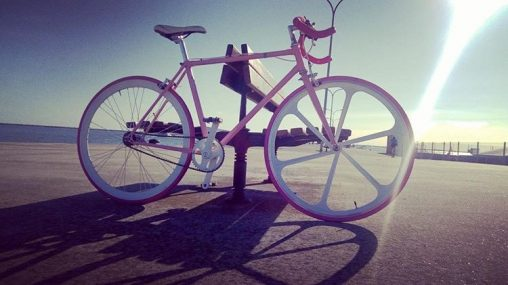 Teodora's Fixed Gear
